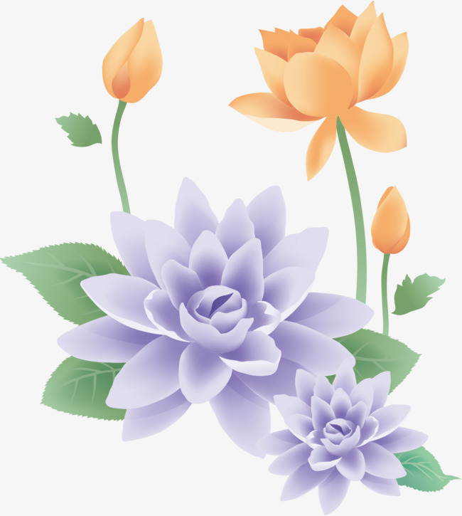 莲花手绘装饰
