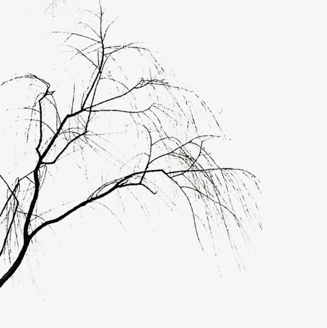 手绘水墨中国风柳树