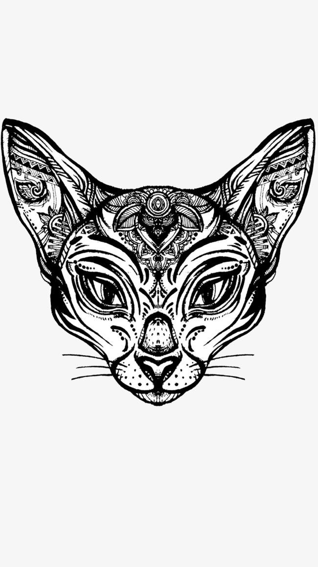 黑白图案猫咪