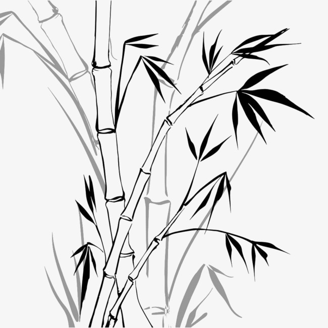 黑色手绘竹子