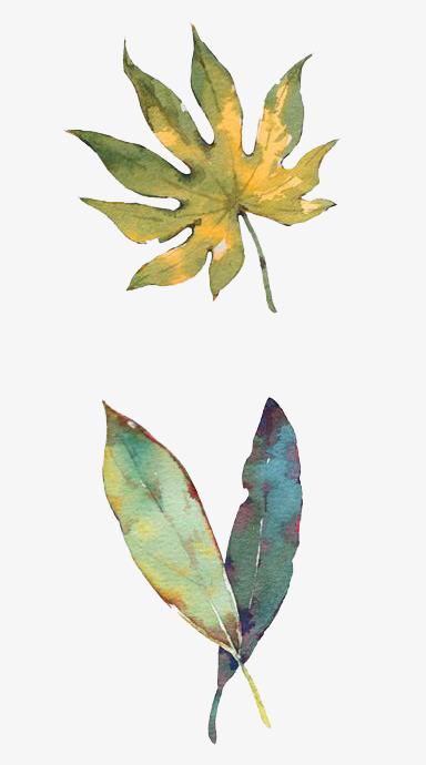 用叶子做 的动物图片