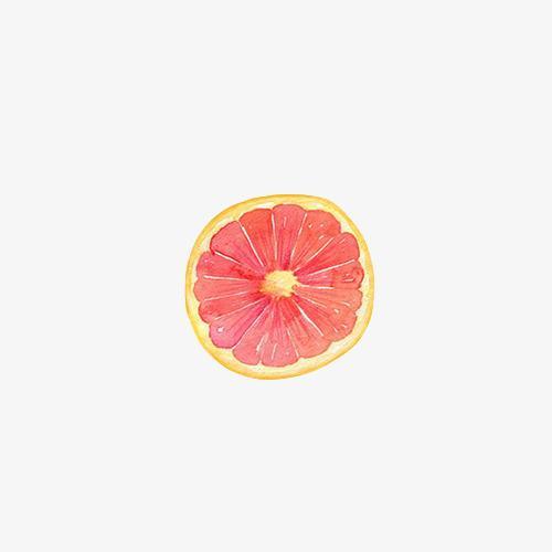 手绘水彩绘画水果柠檬