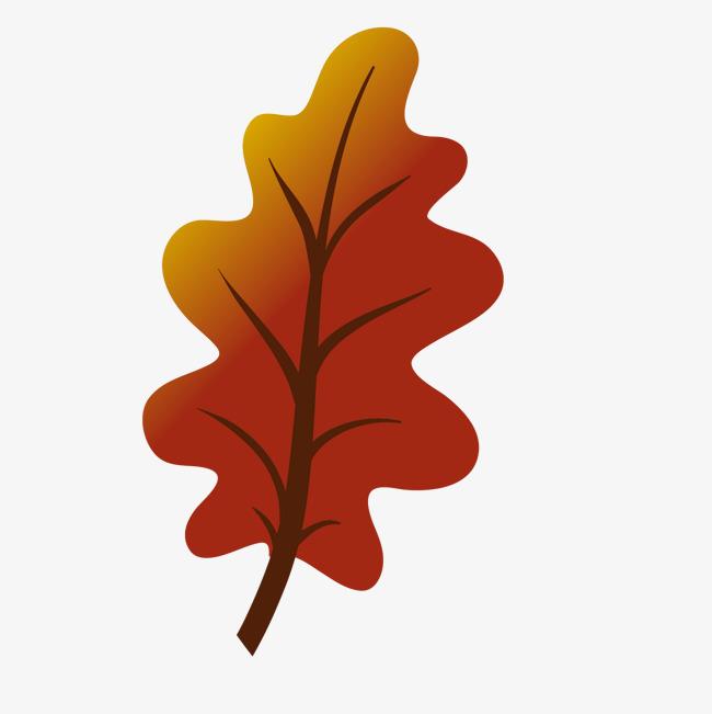 秋天橘黄色落叶手绘