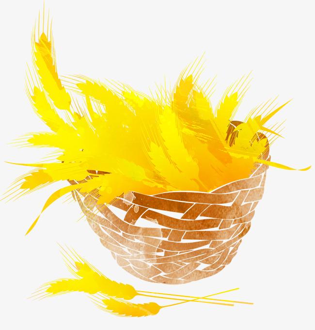 手绘麦穗芒种二十四节气插图素材图片免费下载 高清psd 千库网 图片编号8026224
