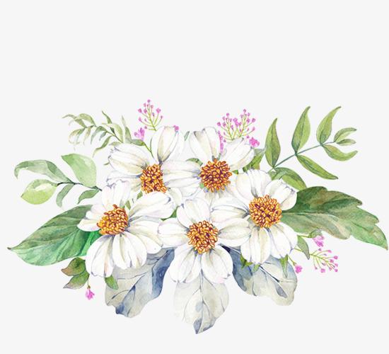 手绘彩绘花朵