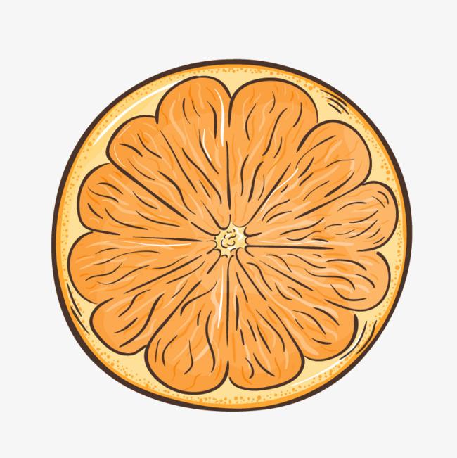 手绘橙子png素材-90设计