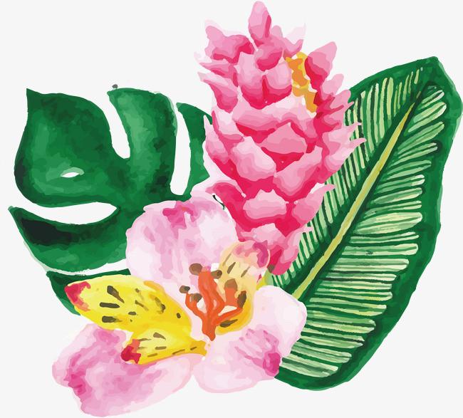 手绘水彩芭蕉叶粉花