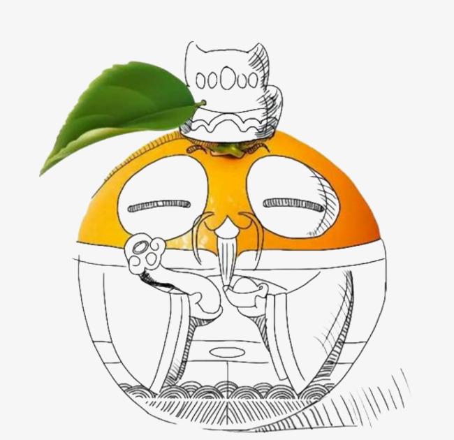 手绘卡通橙子
