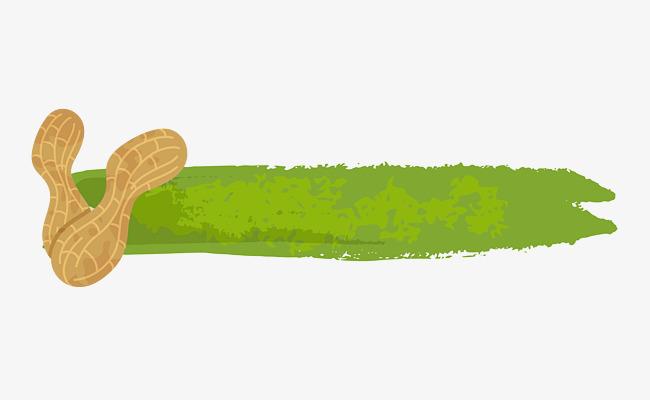 图片 边框纹理 > 【png】 手绘森系花生零食主题背景