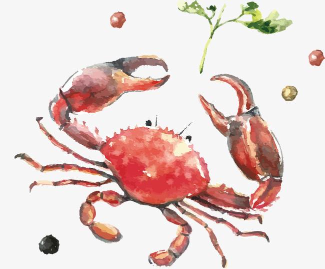 手绘水彩大螃蟹