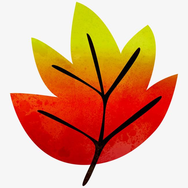 红色手绘枫叶