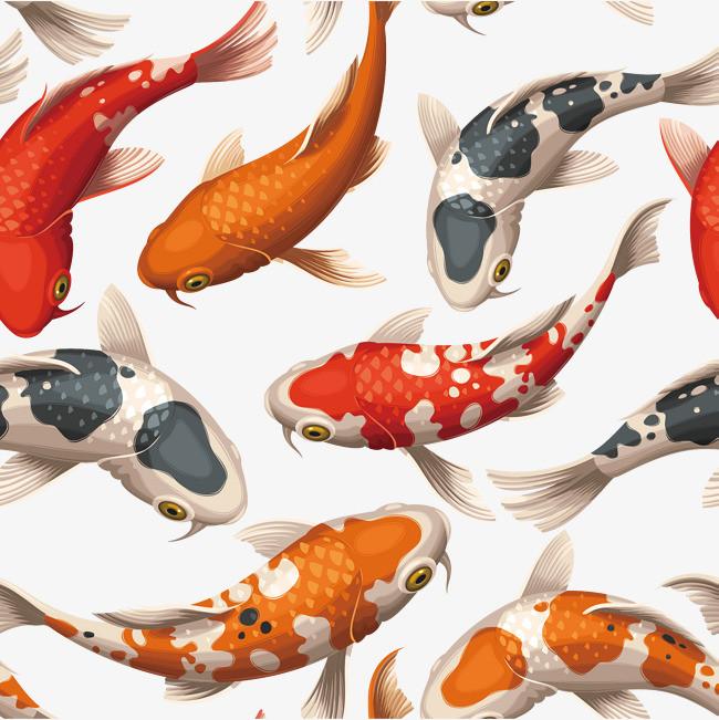 水彩画金鱼矢量