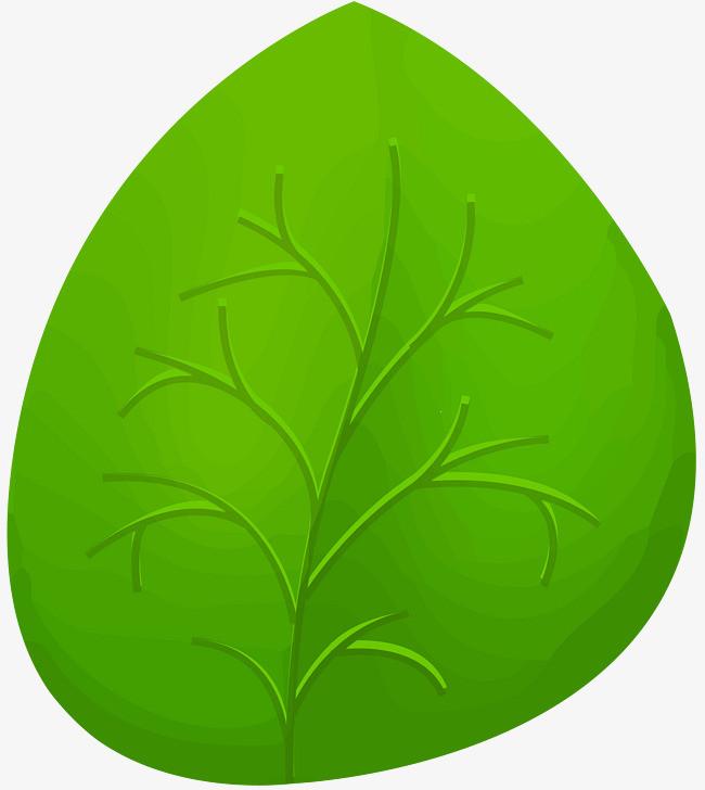 图片 > 【png】 绿色卡通树叶  分类: 类目:其他 格式:png 体积:0.图片