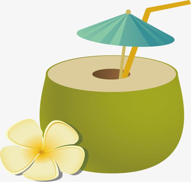 沙滩椰子图片