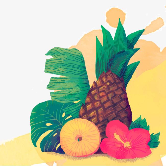 矢量手绘菠萝