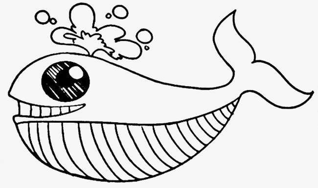 鲸鱼马克简笔画手绘