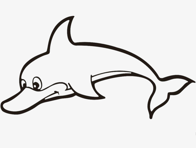 海豚三视图手绘