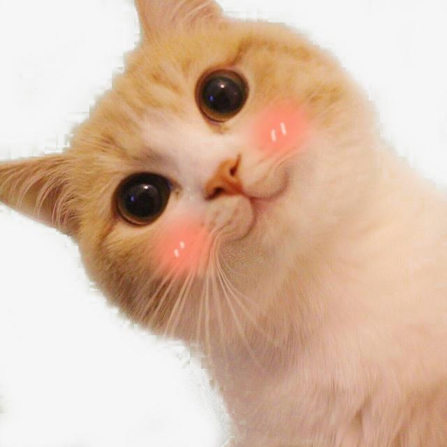 可爱表情表情包吴世勋图片