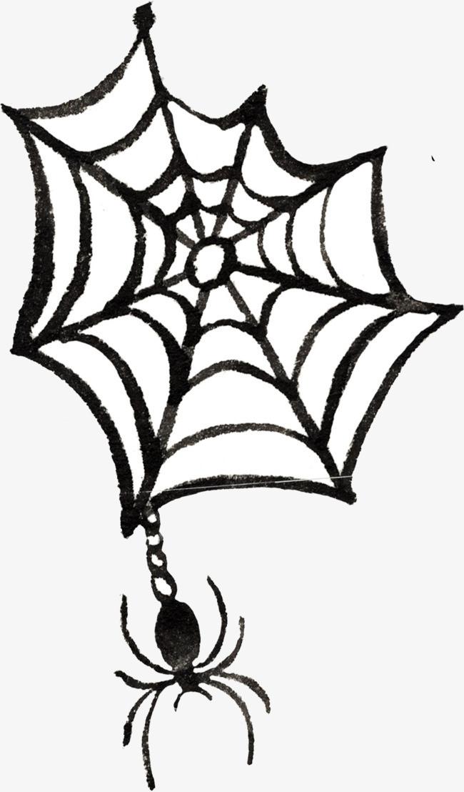 手绘蜘蛛网和蜘蛛