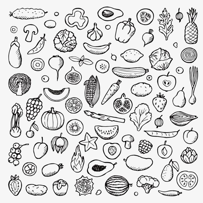 手绘食物线描稿【高清装饰元素png素材】-90设计