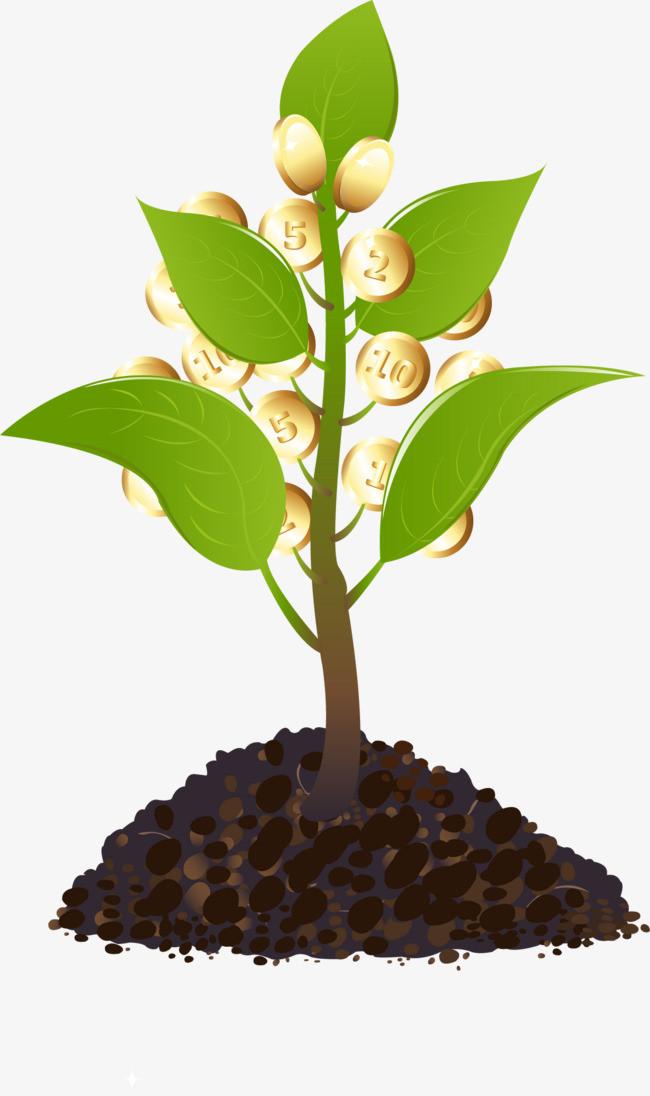 创意小树苗上的金币png素材-90设计图片
