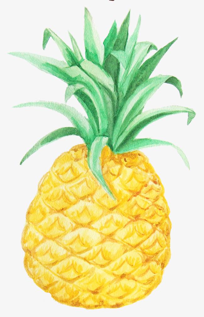 菠萝创意图形手绘