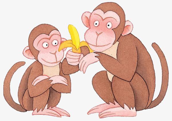 五只猴子吃水果教案.doc