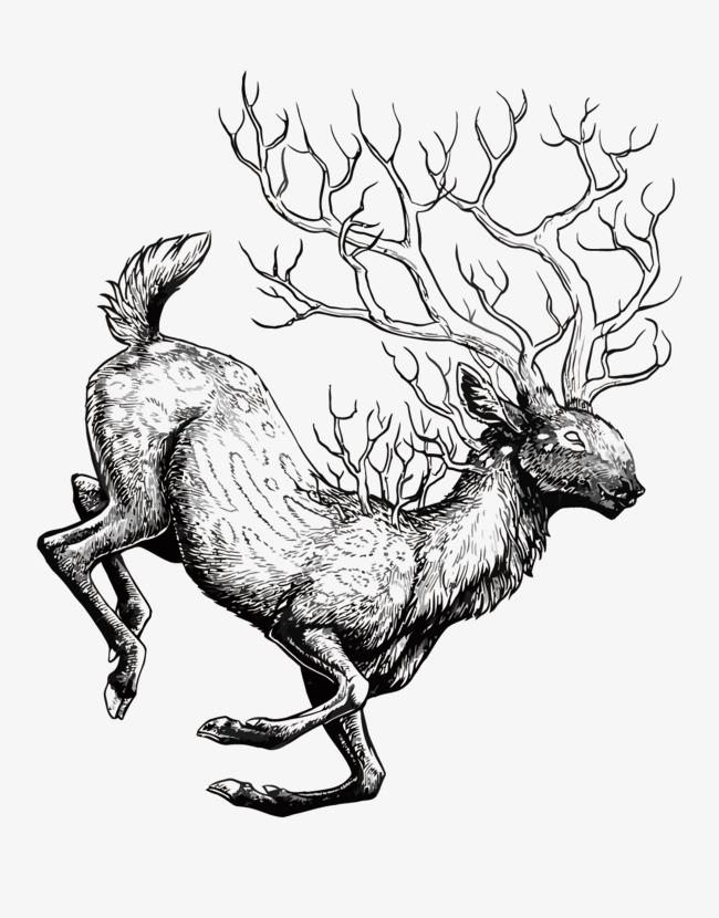 鹿 手绘 森林 矢量鹿鹿png 动物 卡通 生物免扣素材