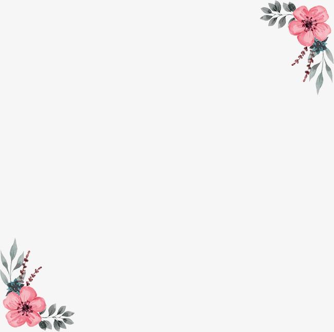 手绘财税蔷薇花装饰边框