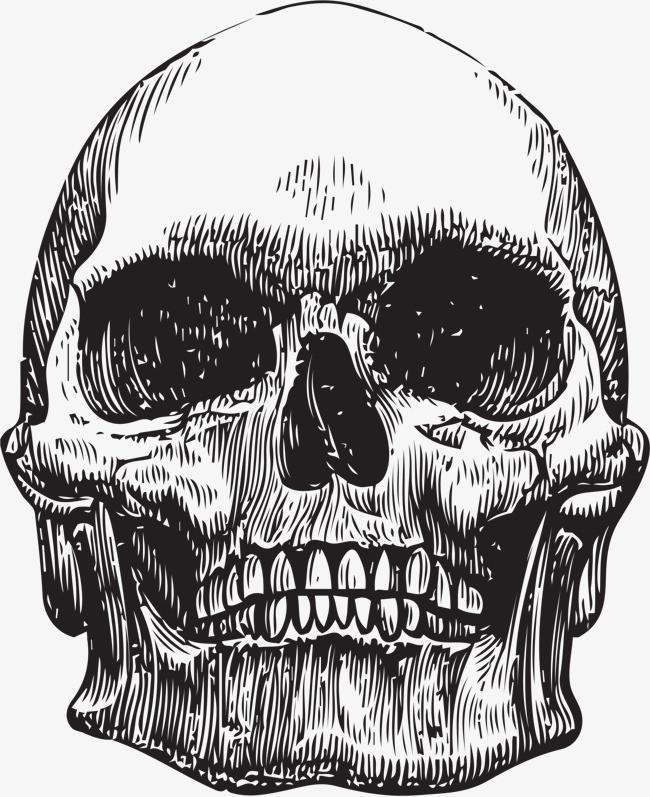 手绘骷髅头