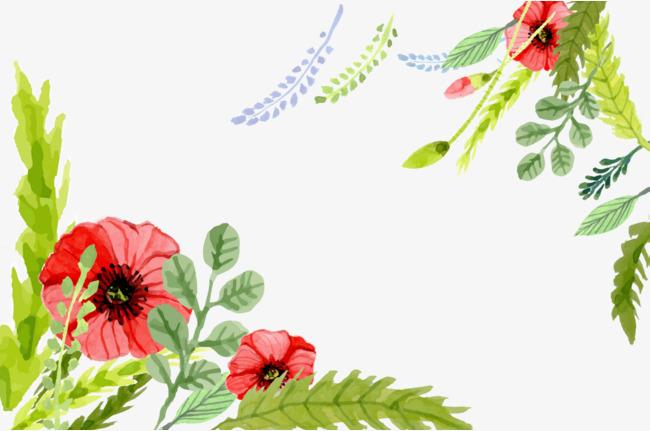 手绘小清新植物