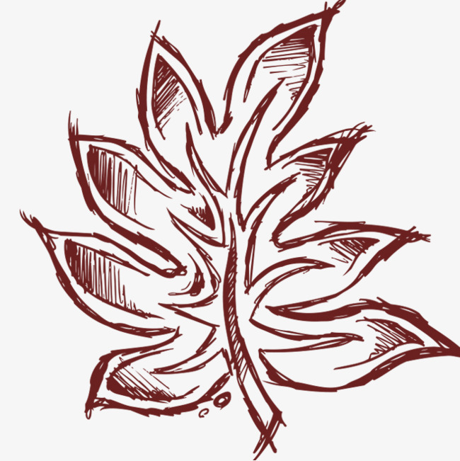 手绘卡通_手绘树叶png素材-90设计
