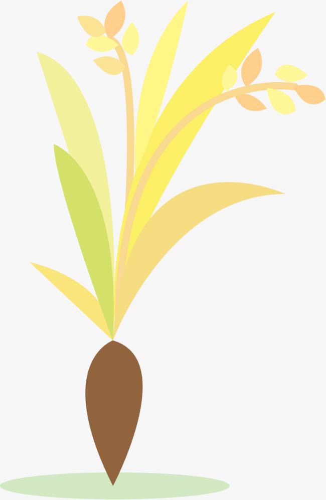卡通金黄色稻谷图片