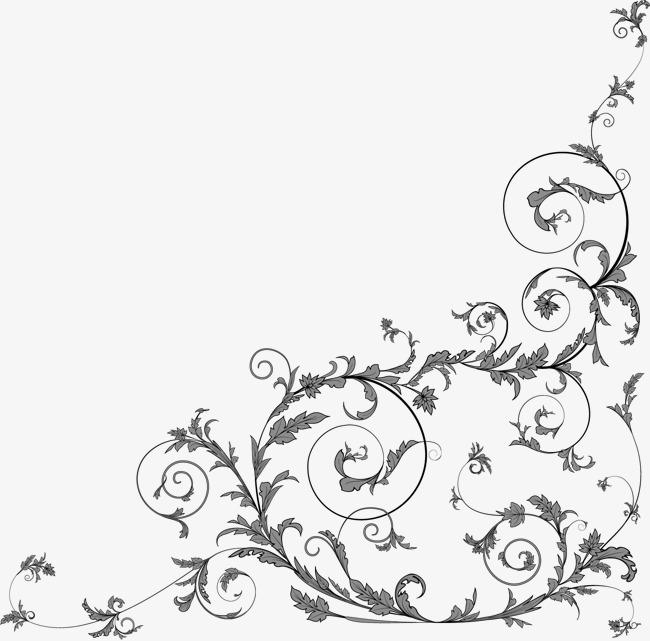 古风花枝手绘线稿
