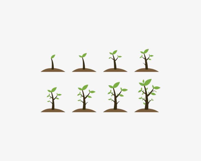 成长之路 简图 小树苗 卡通 手绘 发芽 长大png免费下载图片