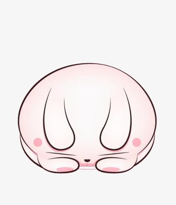 睡觉的小猪