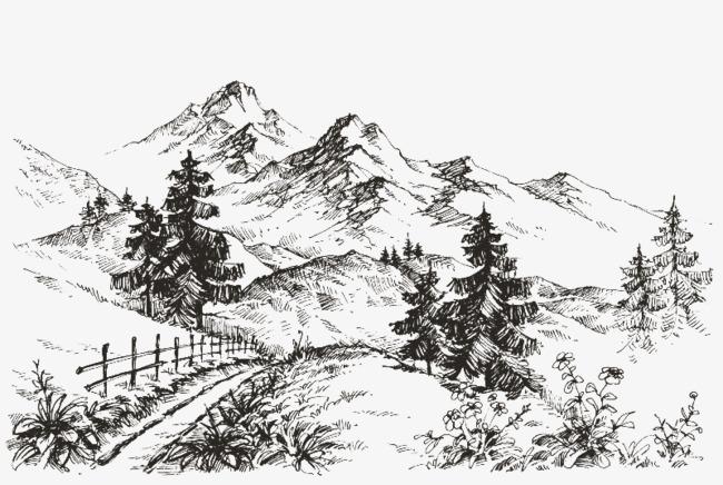 手绘树木平面图线稿