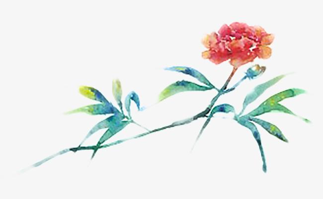 手绘水彩花朵