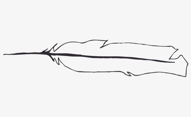 手绘黑白羽毛