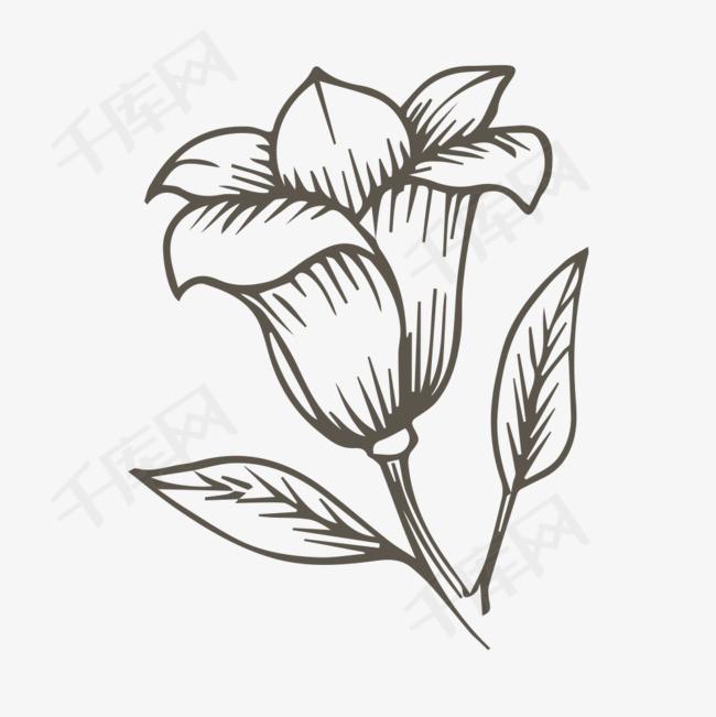 手绘简笔画花朵素材图片免费下载 高清png 千库网 图片编号8675447