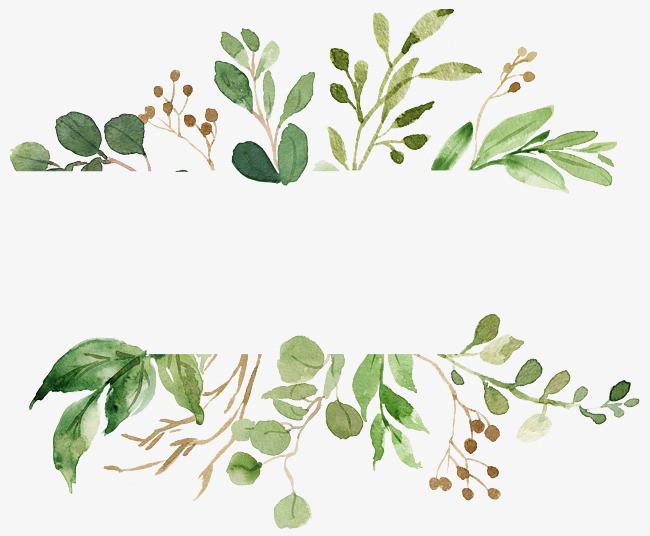矢量图 装饰 矢量装饰手绘画 植物 叶子 矢量图 装饰 矢量装饰png免费