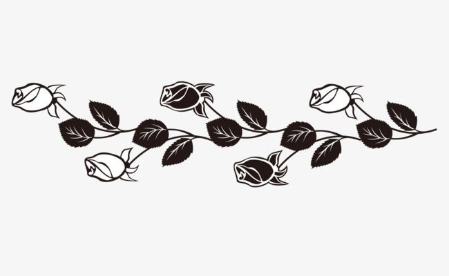 灰色玫瑰花藤蔓