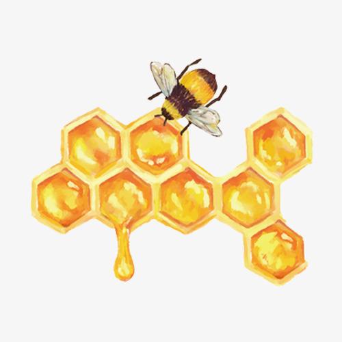 卡通手绘蜜蜂与蜂蜜