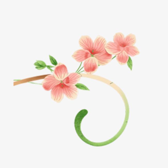 手绘花朵花藤