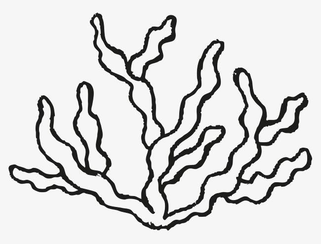 图片 > 【png】 简笔海草  分类:手绘动漫 类目:其他 格式:png 体积