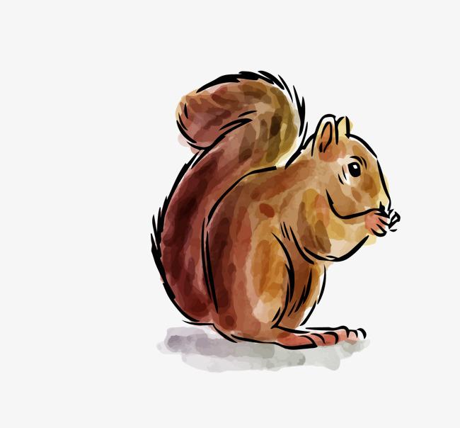 矢量卡通手绘可爱松鼠png