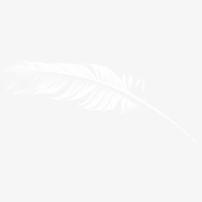 一根羽毛素材图片免费下载_高清png_千库网(图片编号
