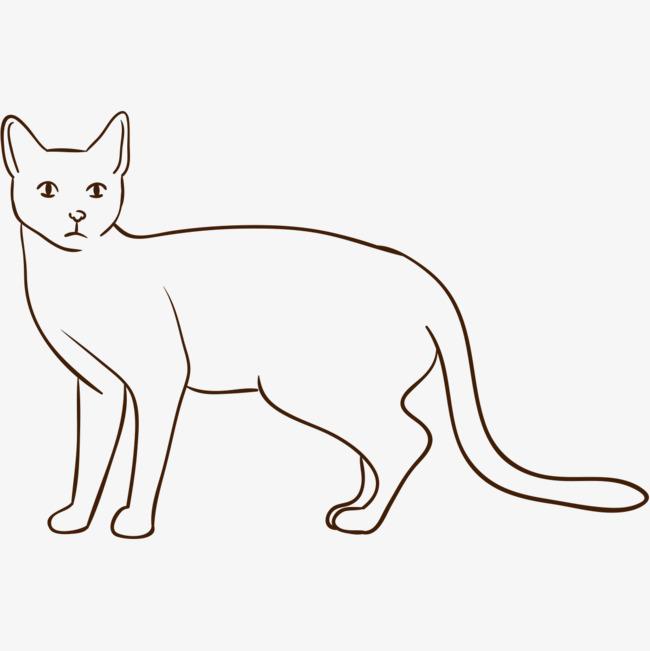手绘宠物猫咪