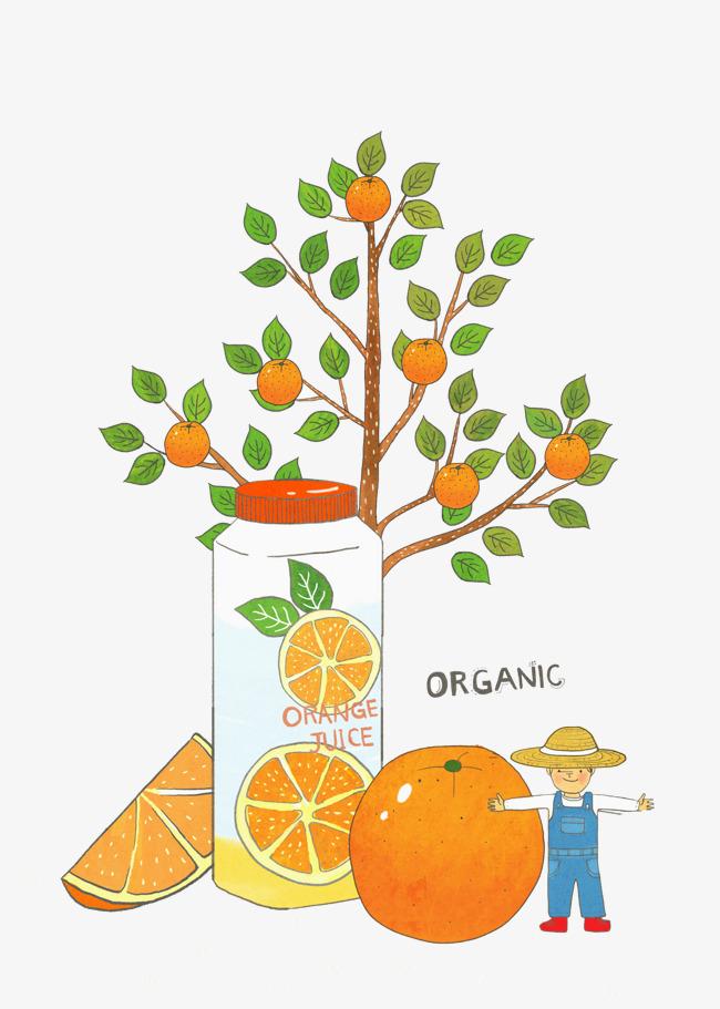 手绘橙子树素材图片免费下载 高清png 千库网 图片编号8817074