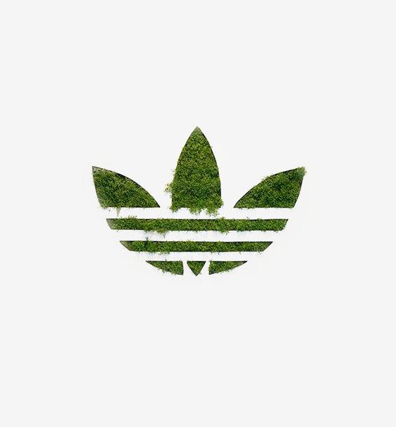 绿色三叶草标志图片